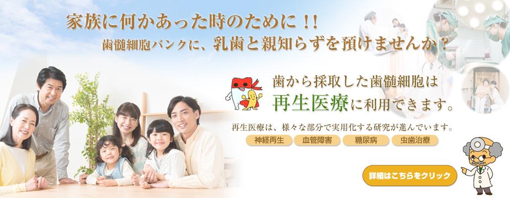 syouni-shika_shizui-botton